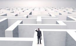 Kleine zakenman in een midden van een labyrint Stock Afbeeldingen