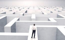 Kleine zakenman in een midden van een labyrint Royalty-vrije Stock Foto