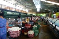 Kleine zijdefabriek in Vietnam Stock Afbeeldingen