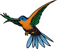 Kleine zoemende vogel Stock Afbeeldingen