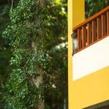 Kleiner Affe auf der Terrasse des Hauses Lizenzfreie Stockfotografie