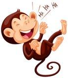 Kleiner Affe, der allein lacht Stockfotos