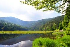 Kleiner Arbersee湖在巴法力亚森林里,德国 图库摄影