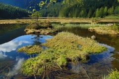 Kleiner Arbersee is een meer in Bayerischer Wald, Beieren, Duitsland Stock Afbeeldingen