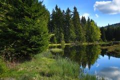 Kleiner Arbersee is een meer in Bayerischer Wald, Beieren, Duitsland Stock Foto