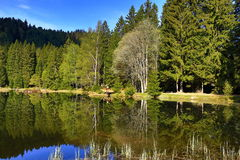 Kleiner Arbersee is a lake in Bayerischer Wald, Bavaria, Germany Royalty Free Stock Image