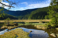 Kleiner Arbersee is a lake in Bayerischer Wald, Bavaria, Germany Stock Images