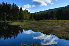 Kleiner Arbersee is a lake in Bayerischer Wald, Bavaria, Germany Stock Image