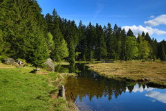 Kleiner Arbersee is a lake in Bayerischer Wald, Bavaria, Germany Royalty Free Stock Photo