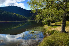 Kleiner Arbersee is a lake in Bayerischer Wald, Bavaria, Germany Stock Photography
