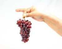 Kleiner Bündelhandfinger der roten Trauben Stockfotos