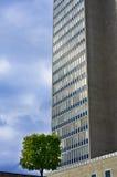 Kleiner Baum und großes Gebäude Lizenzfreie Stockfotos