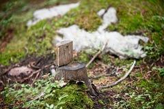 Kleiner Baumstumpfstuhl stockfotos
