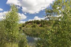Kleiner Berg überwältigt mit Bäumen, auf den Banken des Bildes Lizenzfreies Stockfoto