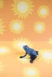 Kleiner blauer Frosch-Sonnenschein-Hintergrund Stockbilder
