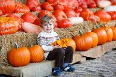 Kleiner blonder Junge auf Kürbisfleckenbauernhof. Stockbild