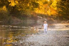 Kleiner blonder Junge in den grünen Gläsern, die auf dem Flussufer spielen Herbst im gelben Wald Lizenzfreies Stockbild