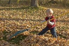 Kleiner blonder Junge, der Blätter harkt Lizenzfreie Stockbilder