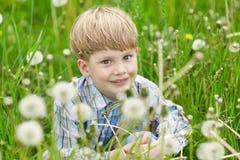 Kleiner blonder Junge, der in einer Wiese sitzt Stockbilder