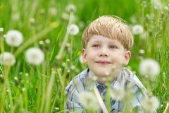 Kleiner blonder Junge, der in einer Wiese sitzt Stockfoto