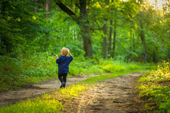 Kleiner blonder Junge, der im Wald spielt Stockbild
