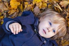 Kleiner blonder Junge mit blauen Augen legt auf Bett des Herbstes Stockbilder