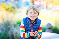 Kleiner blonder Kinderjunge, der mit Kastanien im Park spielt Lizenzfreies Stockbild