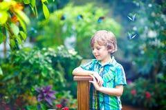 Kleiner blonder Vorschulkinderjunge, der Anlagen, Blumen und Schmetterlinge am botanischen Garten entdeckt Lizenzfreie Stockfotos