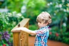 Kleiner blonder Vorschulkinderjunge, der Blumen und Schmetterlinge am botanischen Garten entdeckt Lizenzfreie Stockbilder