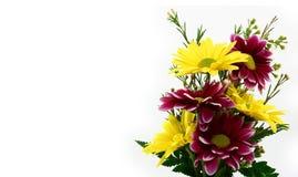 Kleiner Blumen-Blumenstrauß-Abschluss oben Stockfotografie