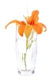 Kleiner Blumenstrauß Lizenzfreie Stockbilder