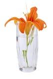 Kleiner Blumenstrauß Stockbild