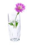 Kleiner Blumenstrauß Stockfotos