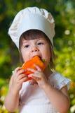 Kleiner Chef schmeckt Gemüsepaprika Lizenzfreies Stockbild