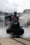 Kleiner Dampf Swithcer Stockfotografie