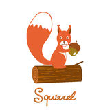 Kleiner Eichhörnchencharakter Lizenzfreie Stockbilder