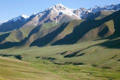 Kleiner Fluss der Ansicht in den alpinen Wiesen Lizenzfreies Stockbild