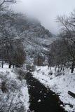 Kleiner Fluss, der in Richtung zum Berg läuft stockfoto