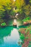 Kleiner Fluss in der wilden Landschaft Lizenzfreies Stockbild