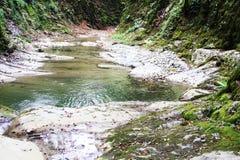 Kleiner Fluss fließt in das Tal des Kaukasus Stockfotos