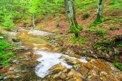 Kleiner Fluss im Berg Stockfotografie