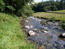 Kleiner Fluss mit Steinen Lizenzfreie Stockfotografie