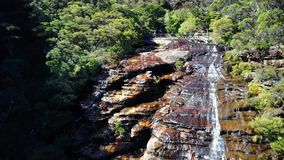 Kleiner Fluss und Wasserfall in den Bergen des überwucherten Waldes stock video