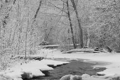 Kleiner Flussstrom am schneebedeckten Tag stockbilder