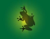 Kleiner Frosch Lizenzfreies Stockfoto