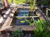 Kleiner Gartenteich Stockbild