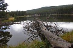 Kleiner Gebirgssee Stockbild