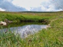 Kleiner Gebirgssee im Gras Lizenzfreie Stockbilder