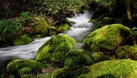 Kleiner Gebirgswasserfall Lizenzfreie Stockfotos