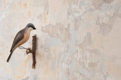 Kleiner geschnitzter Vogel auf einer Patinawand Stockbilder